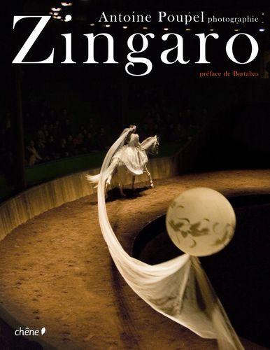 Zingaro2