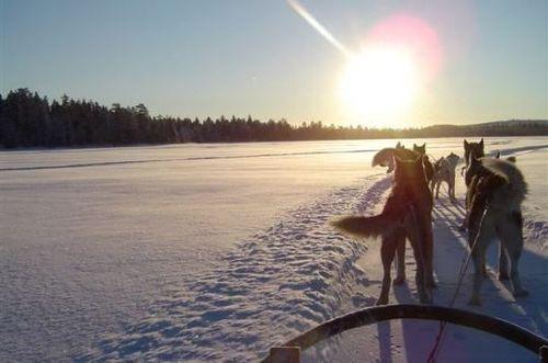 GRANDNORD-Laponija10