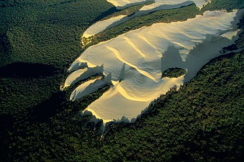 Dune sur l'Ile Fraser, Australie